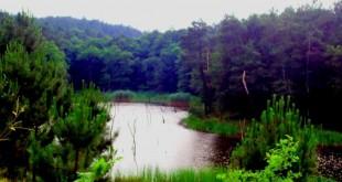 İmrhor-gölleri0107